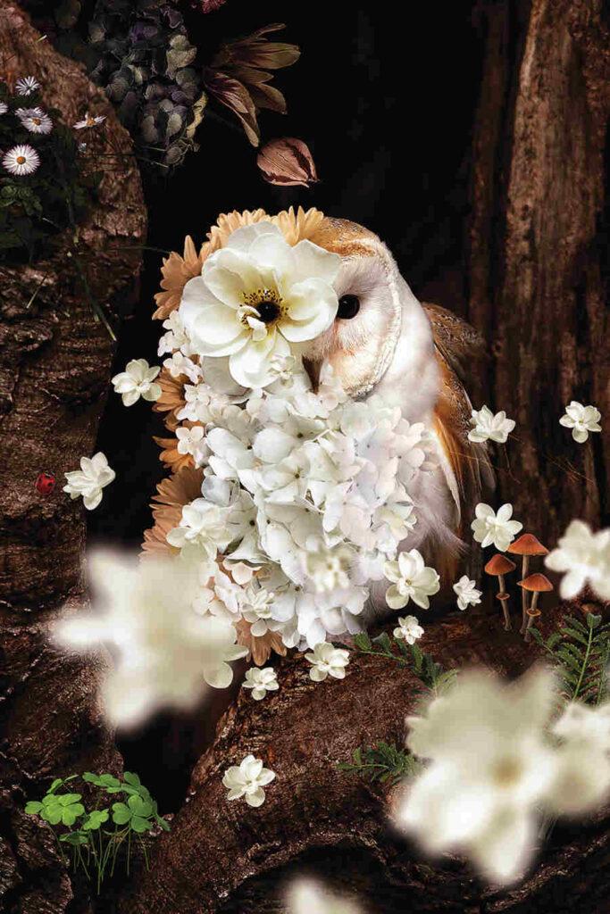 Karen Cantuq owl flowers iCanvas