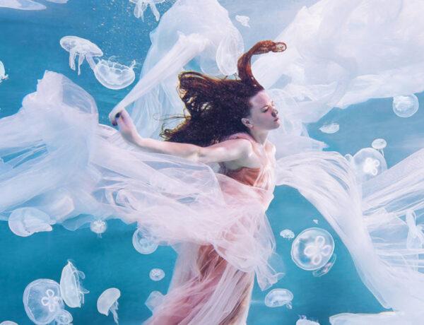 Hobopeeba underwater jellyfish photography