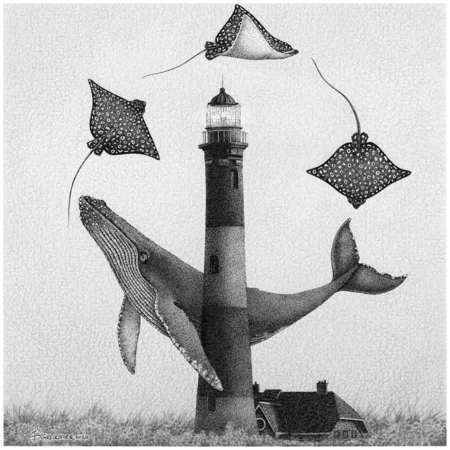 Juliet Schreckinger lighthouse whale stingrays