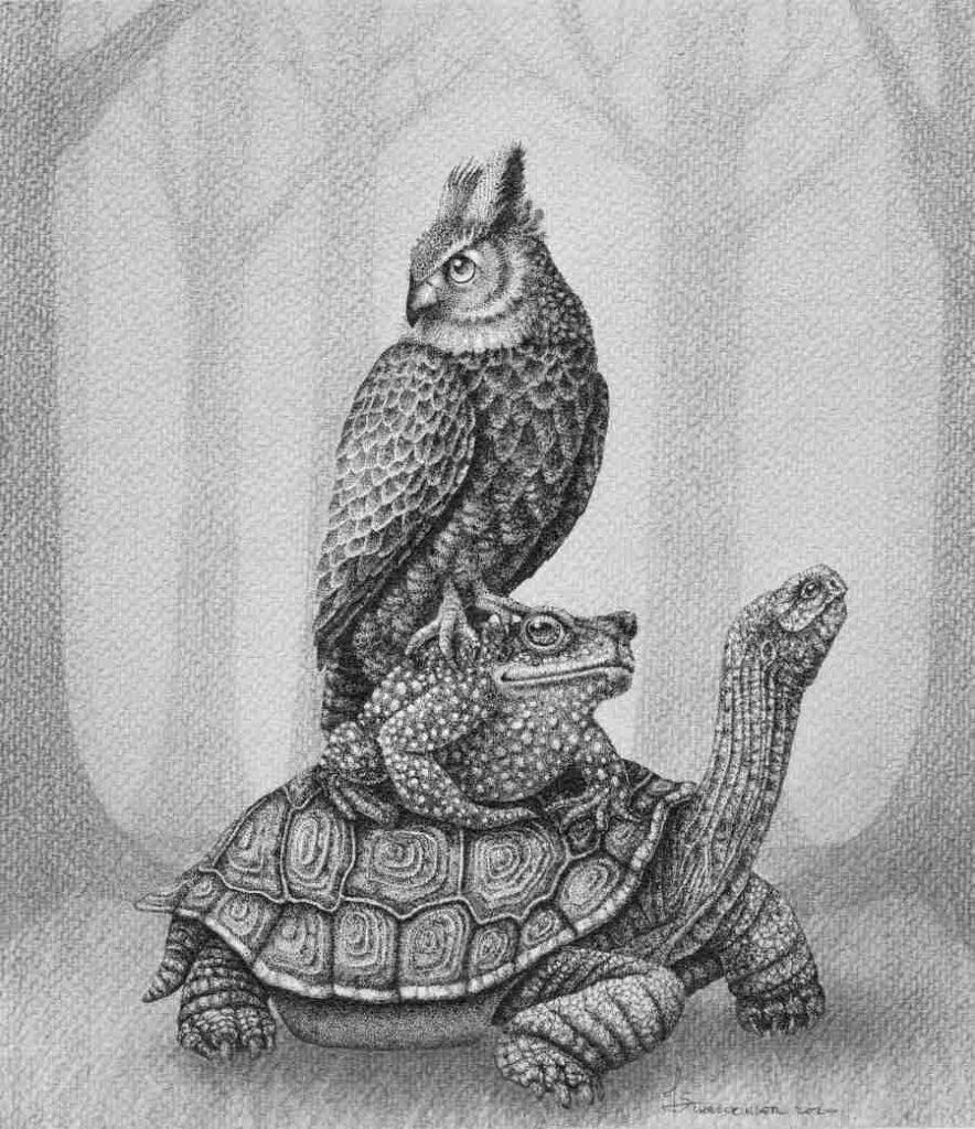 Juliet Schreckinger turle toad and owl illustration