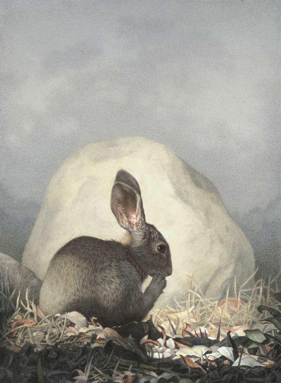 Susan McDonnell Marsh Hare Watercolor