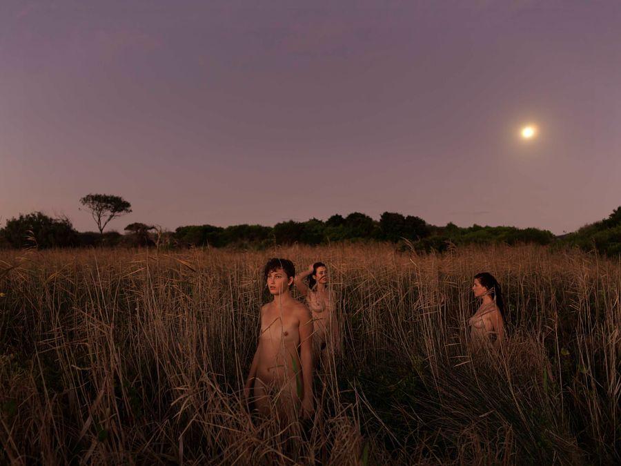 Tamara Dean Photography of women in field at dusk