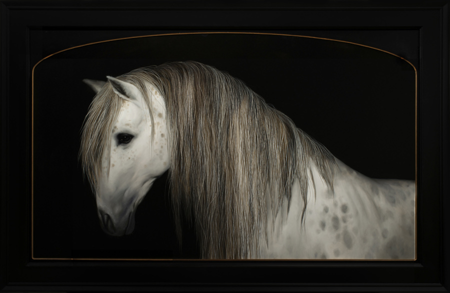 Che Leviathan horse portrait Copro Gallery