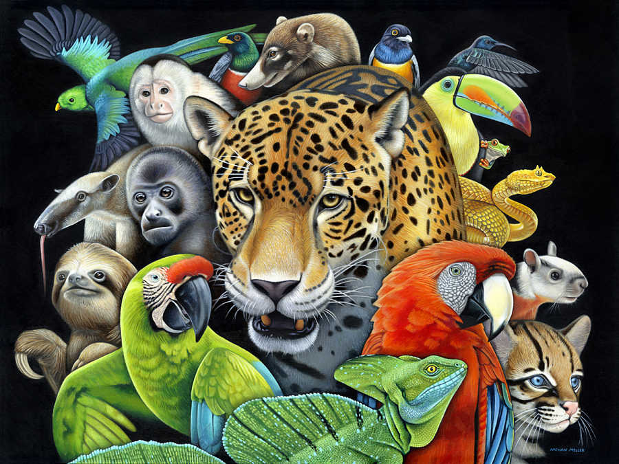 nathan miller fine art the circle of life painting