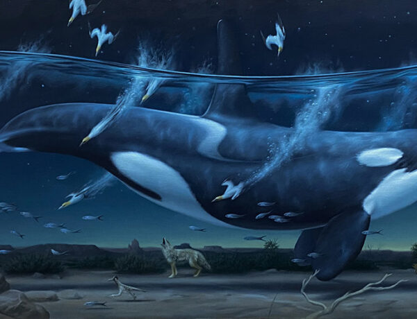 Phillip-Singer-surreal-killer-whale-painting-Beautiful-Bizarre-Art-Prize