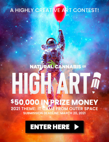 High-art-banner