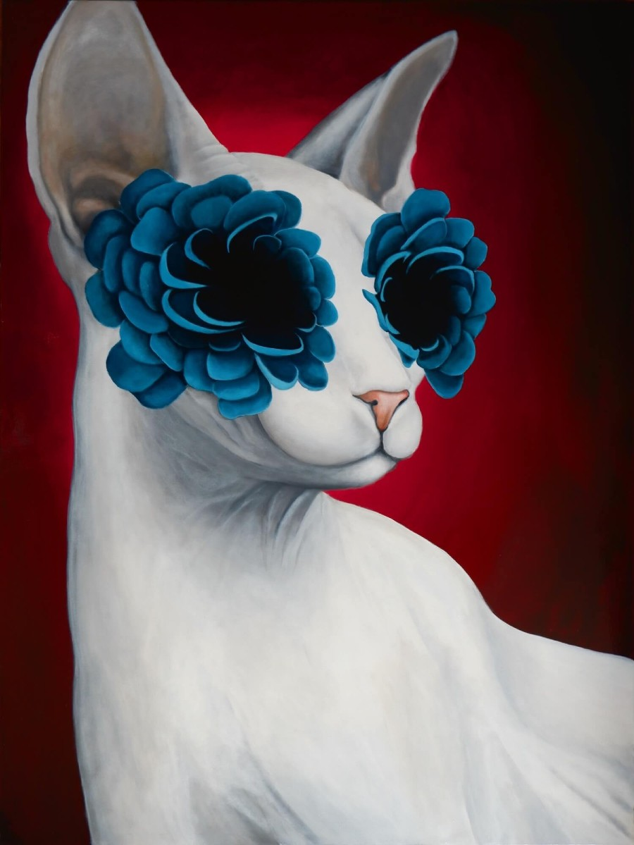 Caroline Gaudreault Animal Portrait