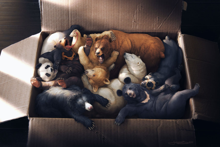 Joaquin Baldwin box of bears