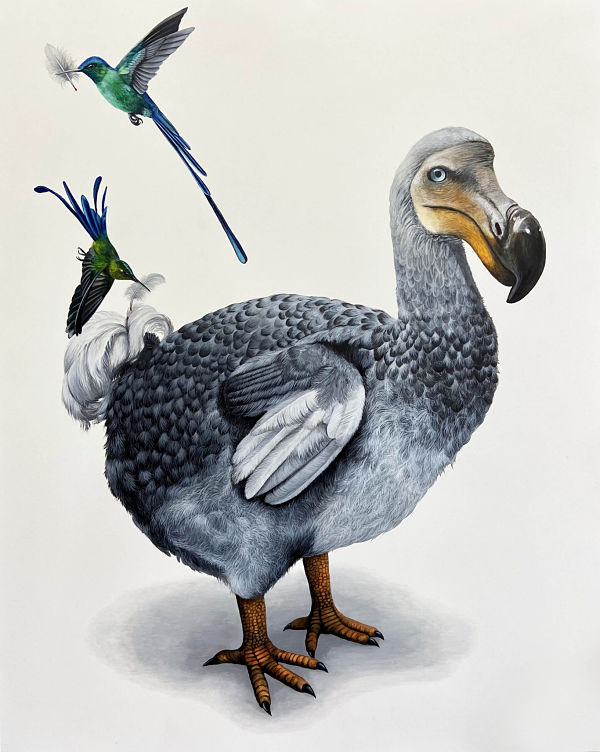 Louise-McNaught-bird