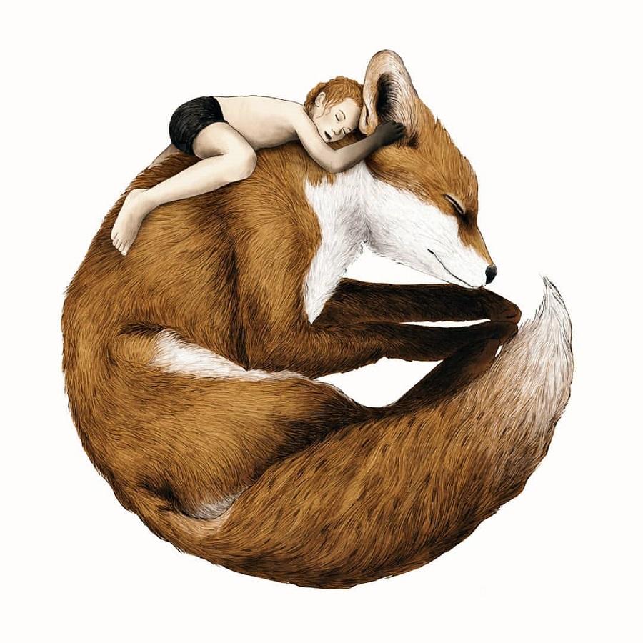 Gabriella-Barouch-fox