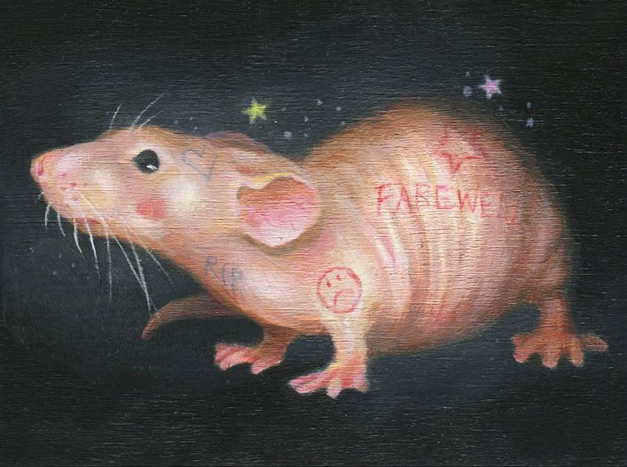 Hanna Jaeun rat The Dark Art Emporium