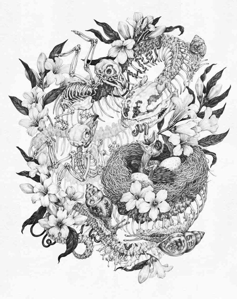 Zoe-Keller-Guts-wildlife drawing