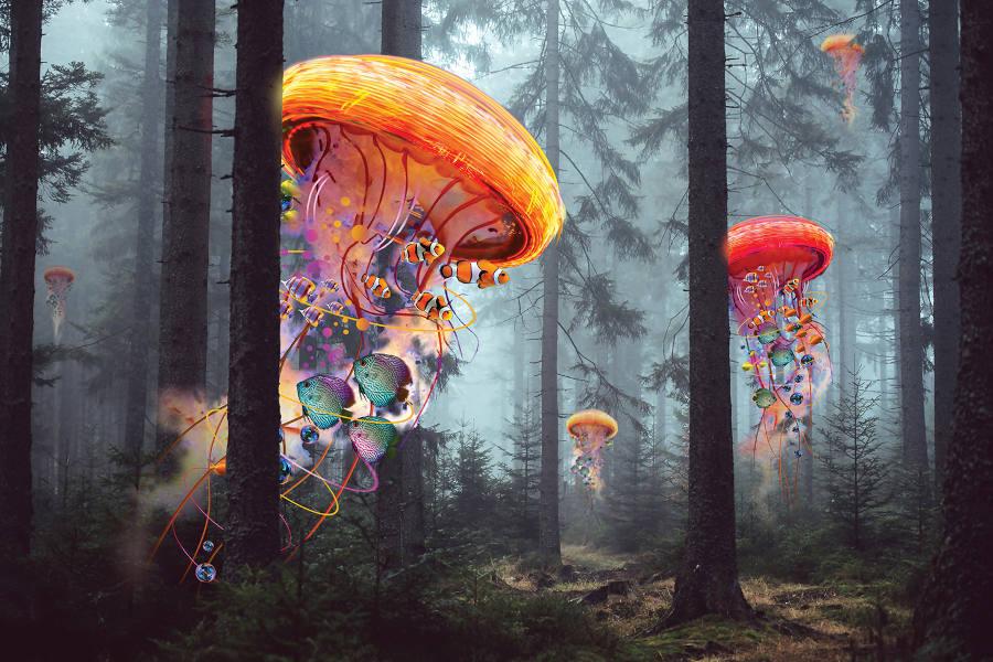 David Loblaw-Electric-Jellyfish-Forest