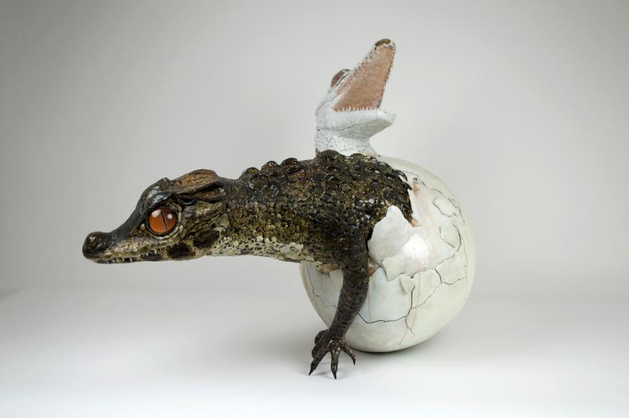 Sarah-Lee-yin-and-yang-crocodile