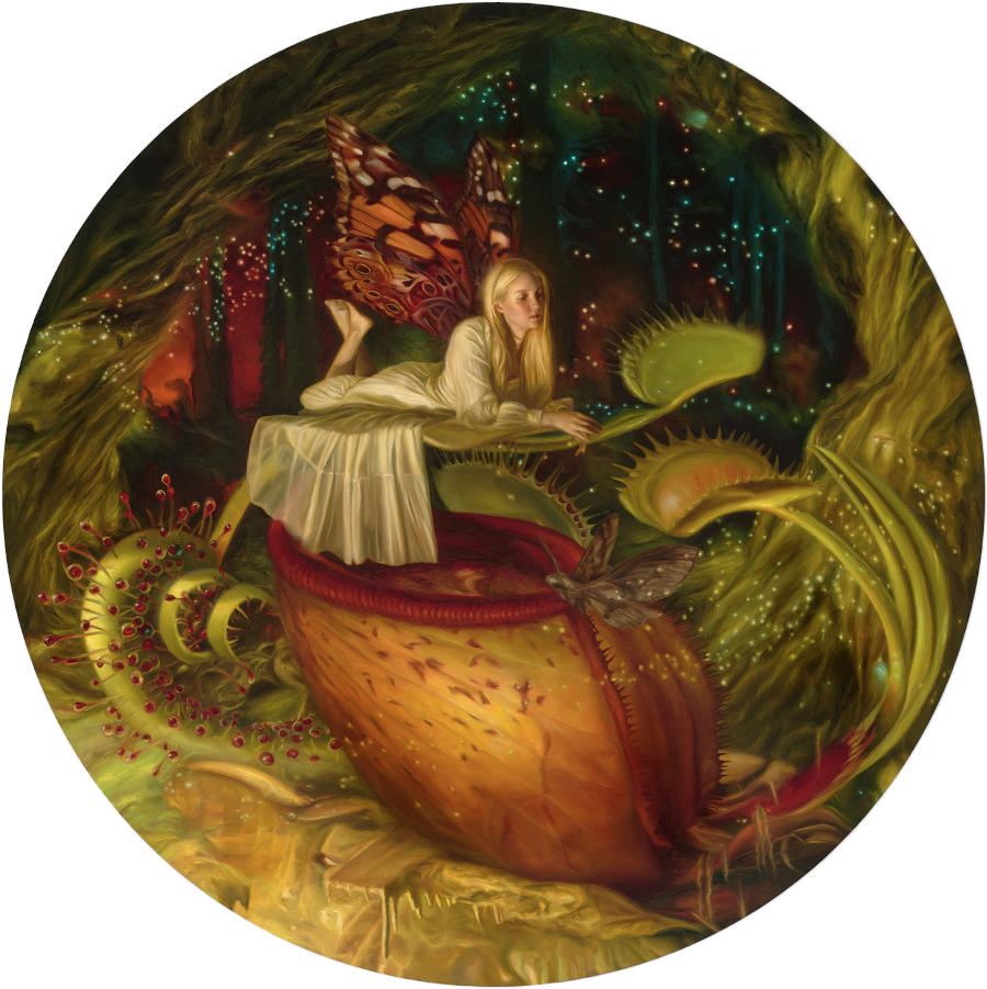 Olivia-Di-Gregorio-Carnivore-Among-the-Sundew