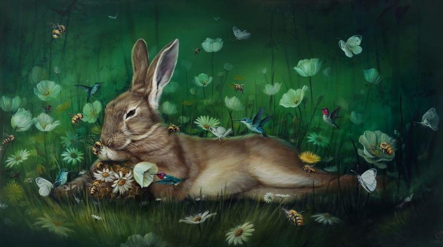 dewi-plass-bunny