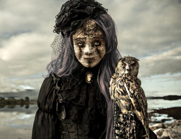 Mothmeister-Portrait-Owl