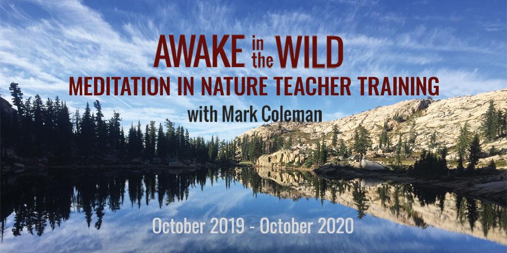 Awake in the Wild Teacher Training