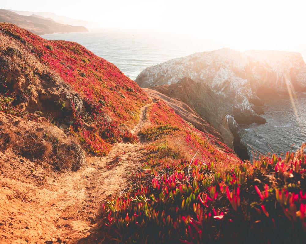 Marin Headlands Photo by Will Truettner|