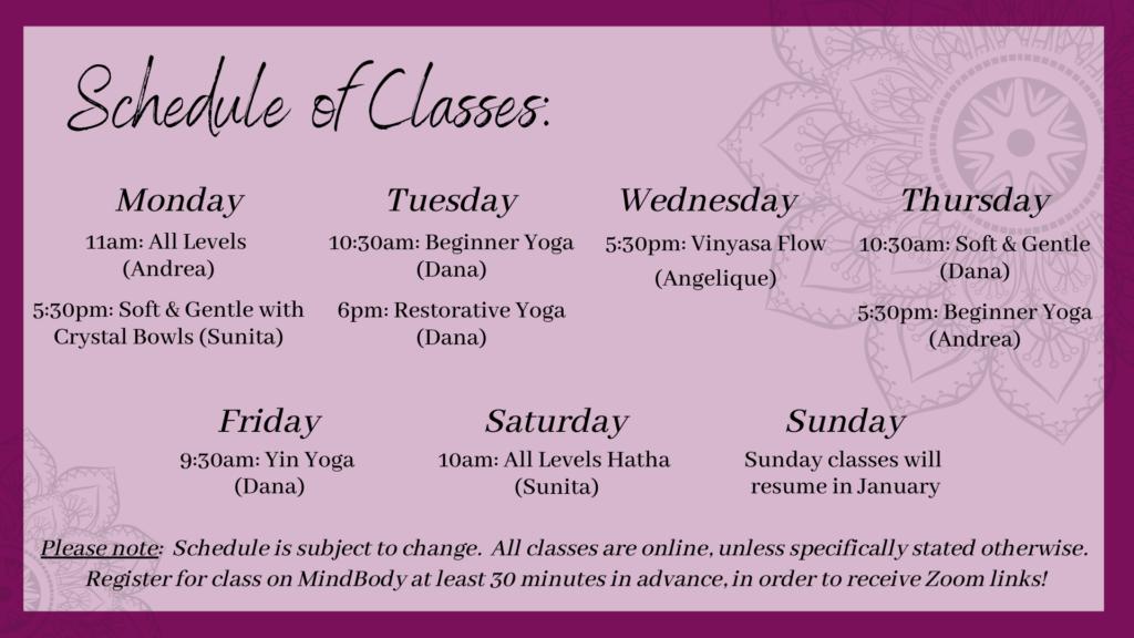 Online Class Schedule(28)