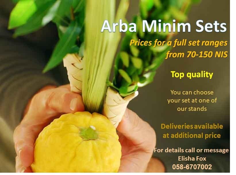 Arba Minim sets