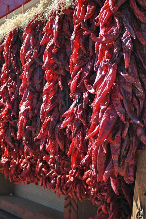KeyVision Interiors, Acequia Madre - Dried Red Peppers