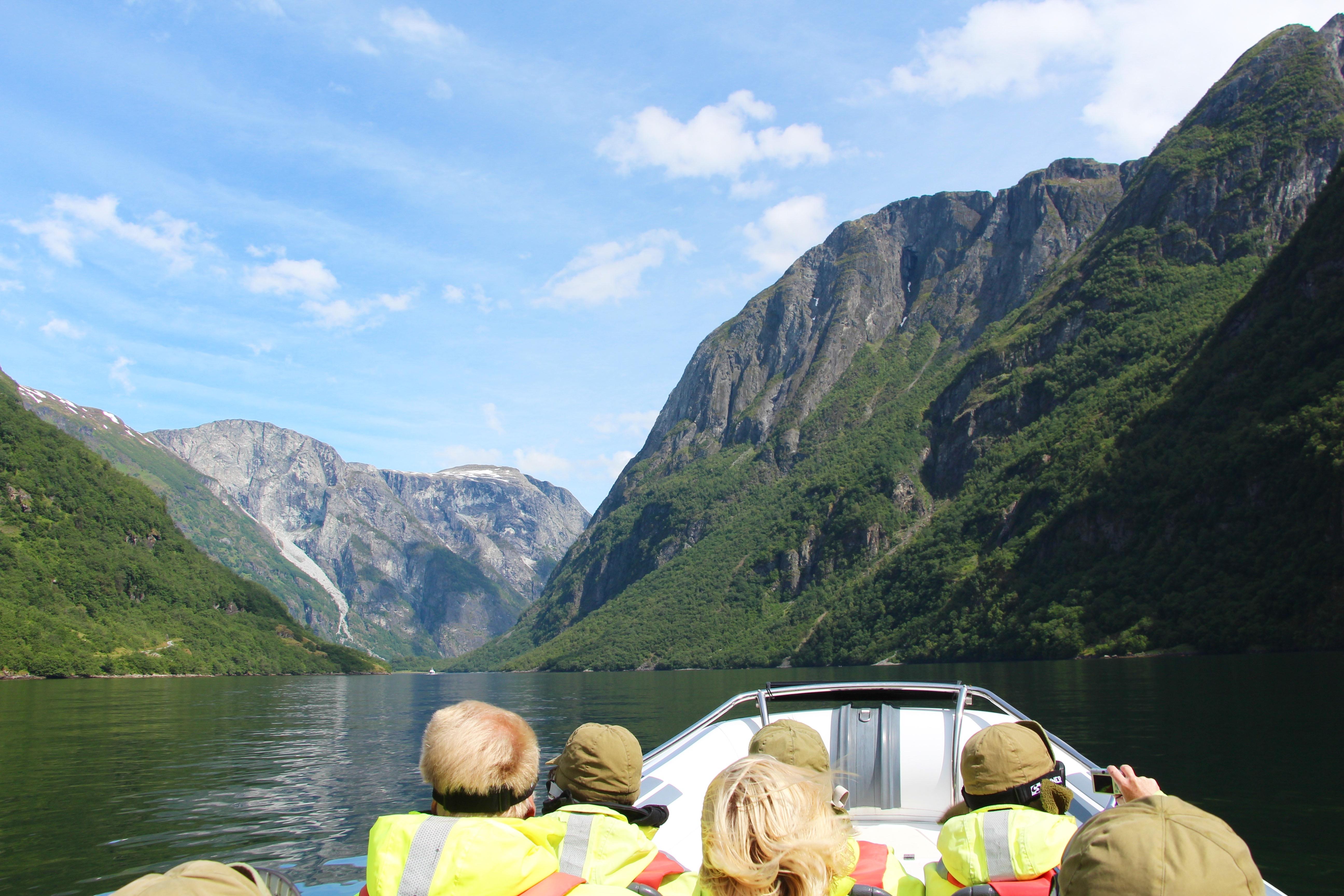 a fjord safari