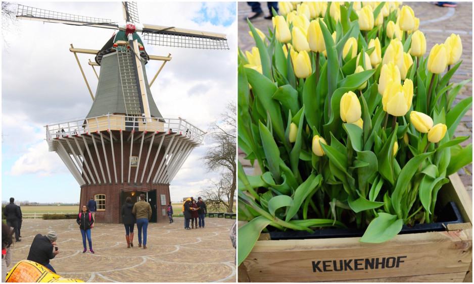 Easter at Keukenhof Tulip Festival8