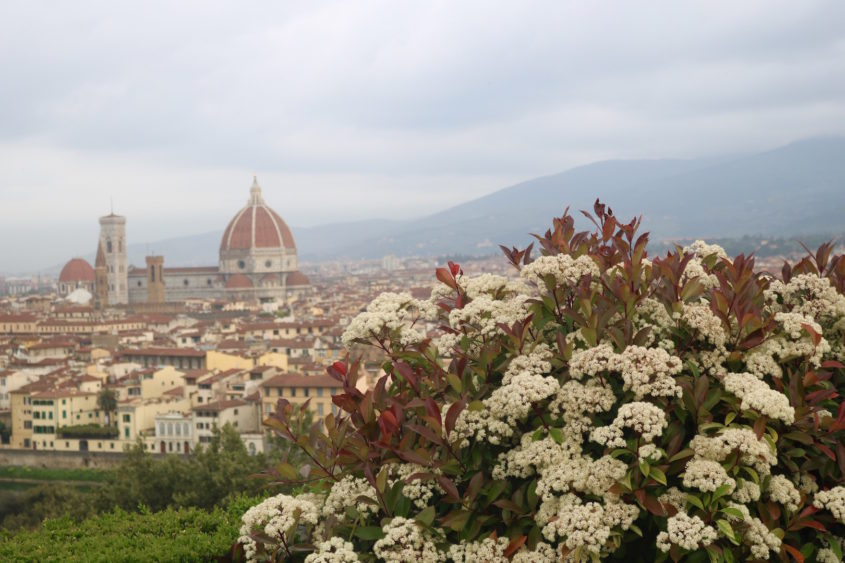 Florence with Friends