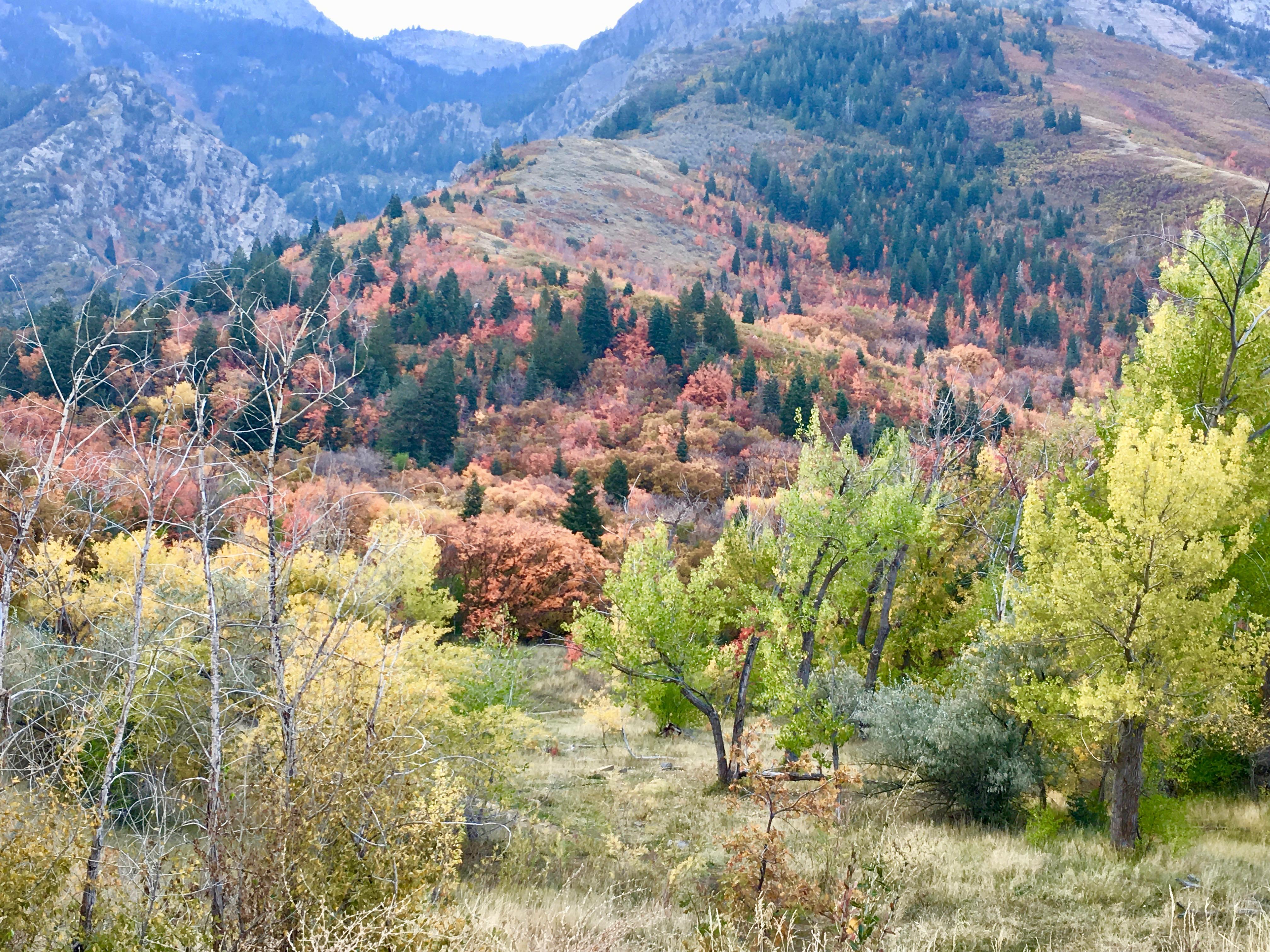 Utah Fall visit