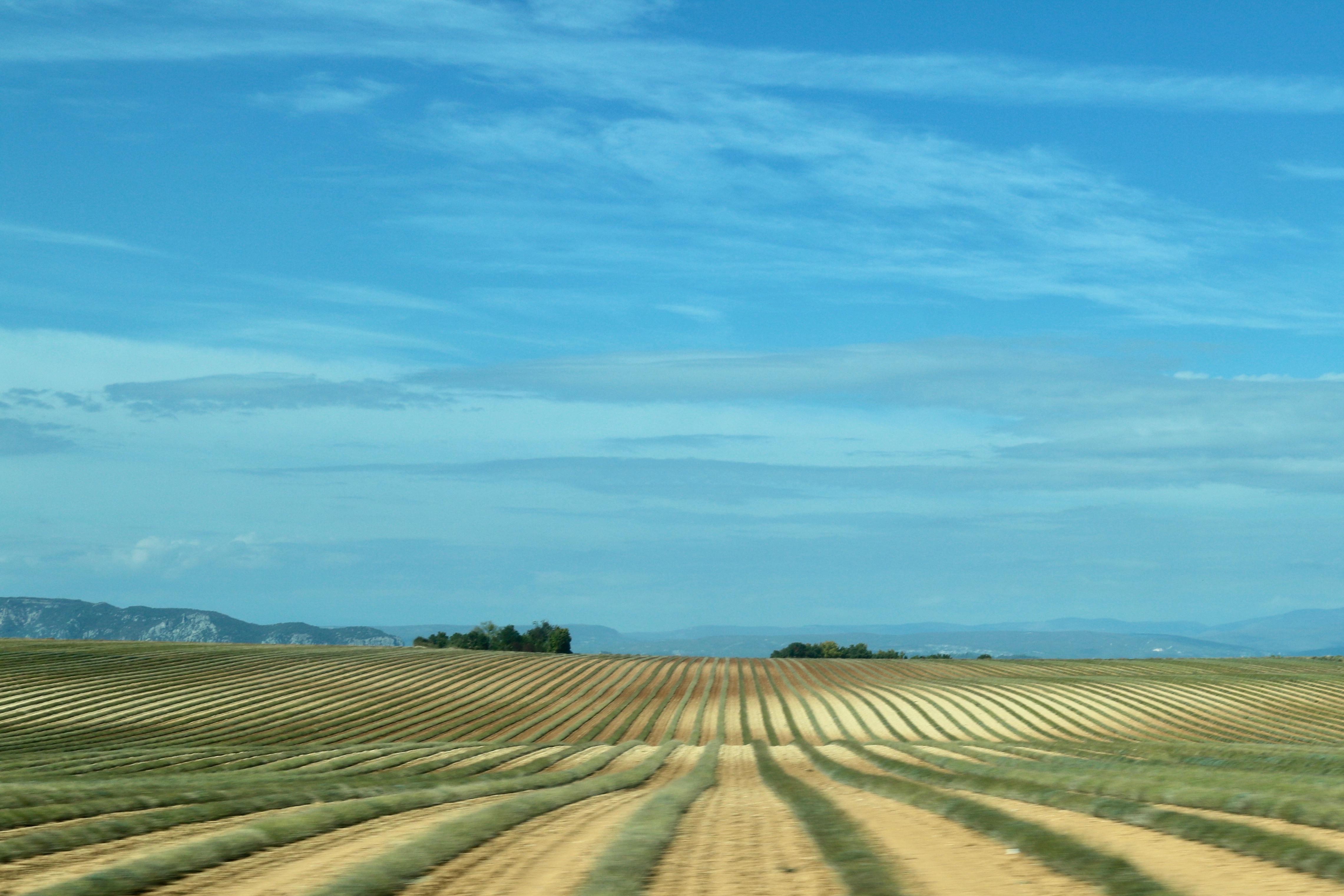 Road trip through Provence