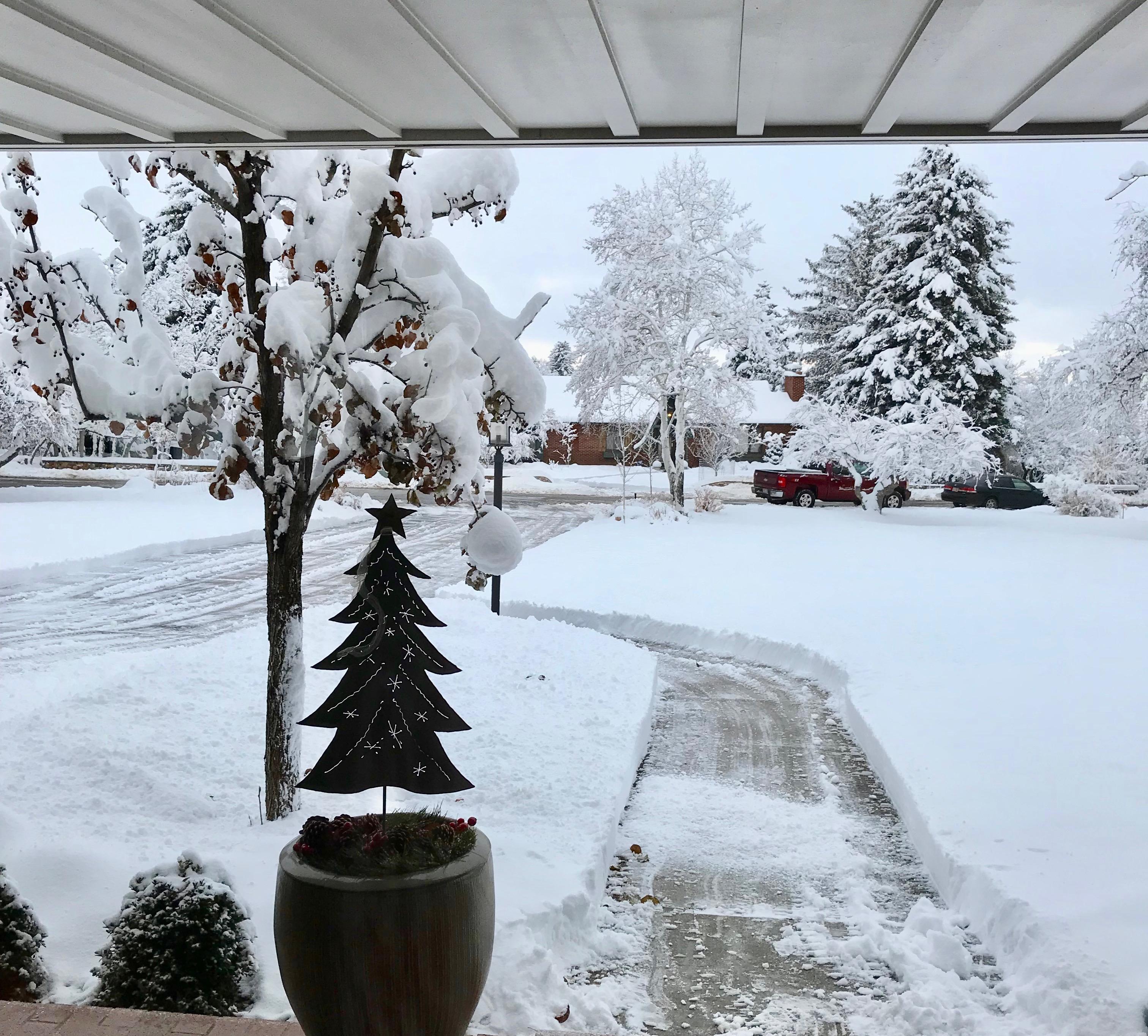 Utah for Christmas! 2018