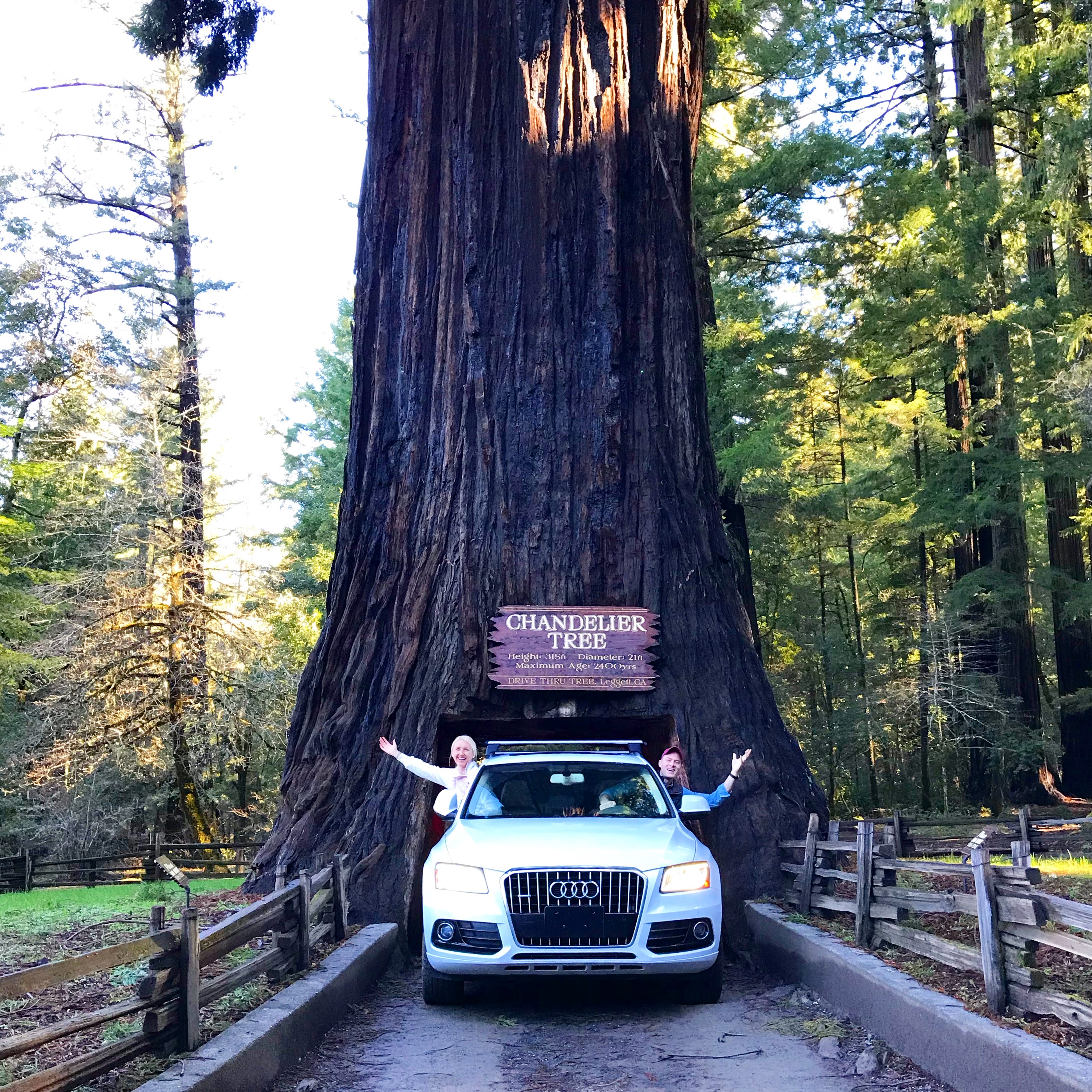 Humboldt County Trip
