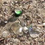 st mary cemetery broken bottles, etc