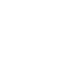 Twisted Motion LV