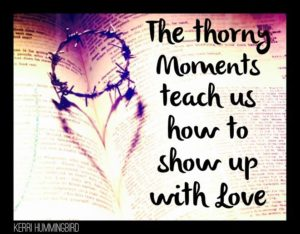 Thorny Moments Teach Us To Love