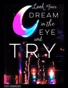 Look Your Dream In The Eye…And Try
