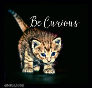 Choose Curiosity