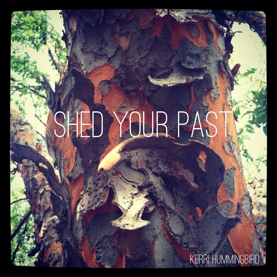 Shed Your Past
