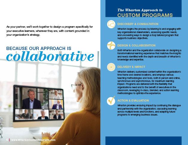 Custom Programs Brochure