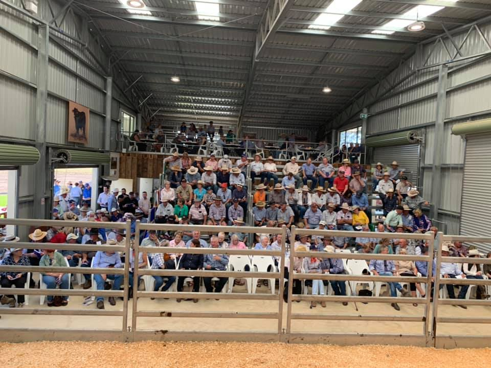 Yulgilbar Annual Production Sale 2019