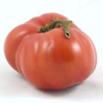 Picture: Tomato Sweet Adelaide (courtesy Bunny Hop Seeds)