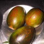 Picture Tomato Brad's Atomic Grape #1 (my pic)