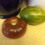 Picture Tomato Dwarf Saucy Mary and Chocolate Champion