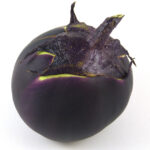 Eggplant Kamo (courtesy Bunny Hop Seeds)