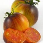 Tomato Alice's Dream (courtesy Heritage Seed Market)