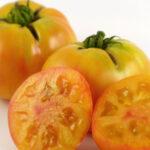 Tomato Wherokowhai Dwarf (courtesy Bunny Hop Seeds)