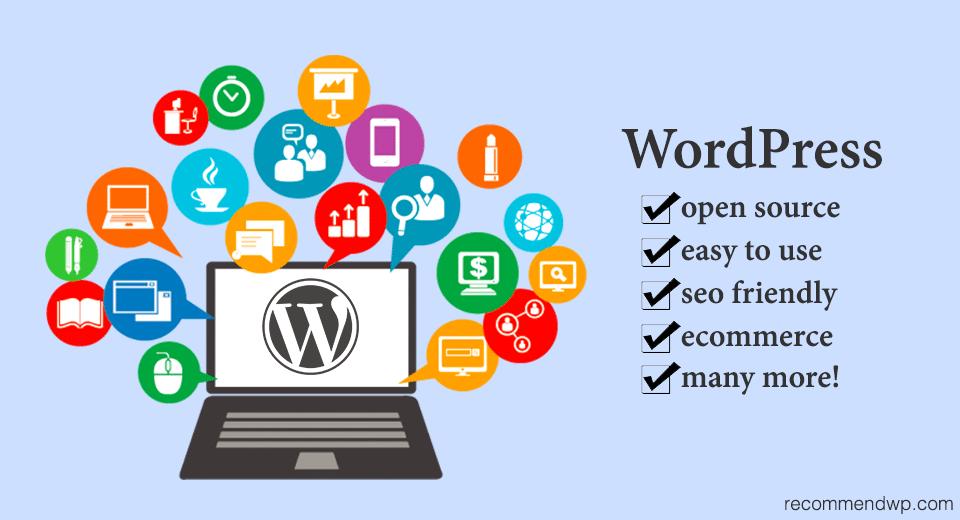 using wordpress cms