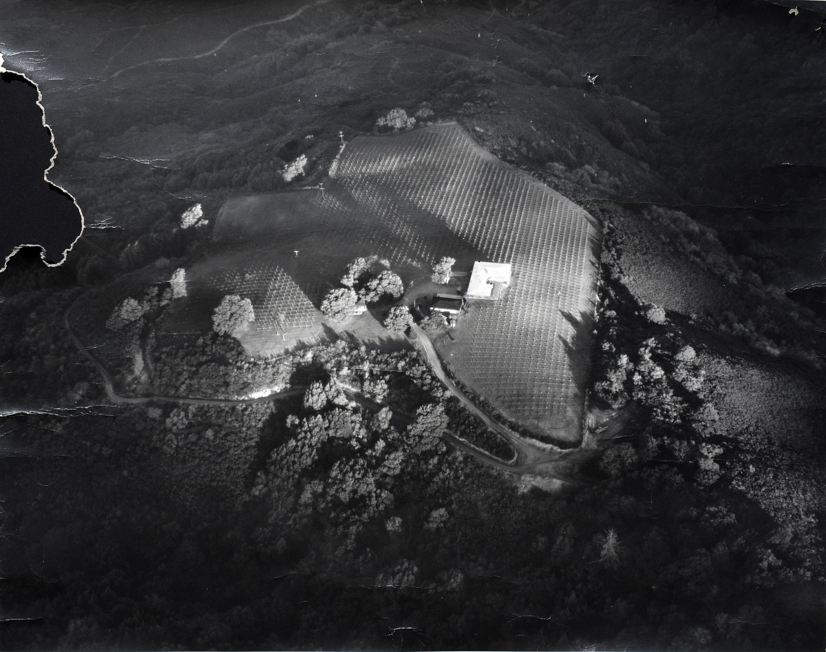 Aerial View of the Winery - 1950's