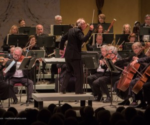 Festival Orchestra 2, featuring Spencer Myer 2019